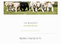 Site de PETER STROO
